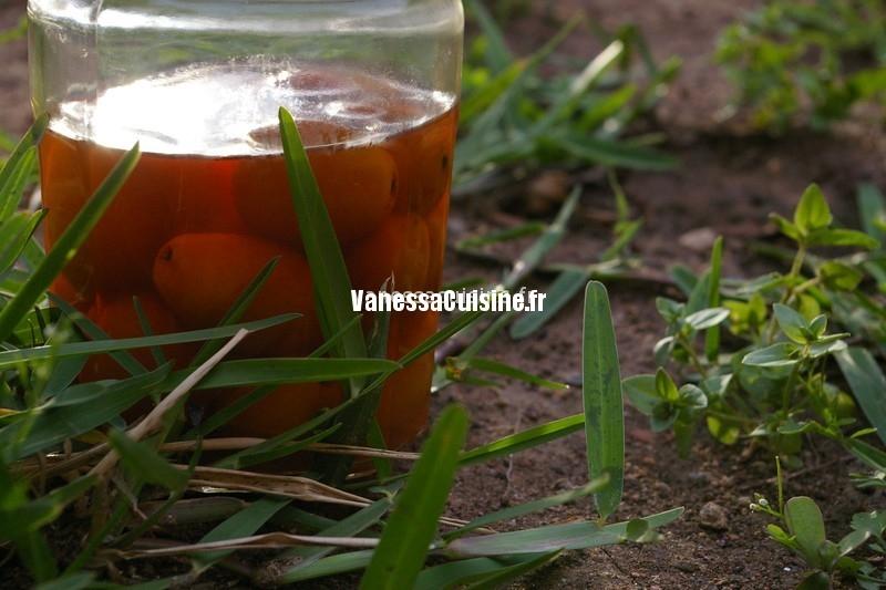 vinaigre de kumquats, by LOF