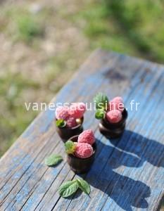 Verrines de chocolat à la mangue, framboises