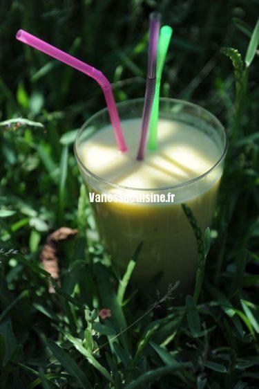 recette de smoothie ananas banane coco et stévia