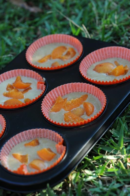 Gâteaux à la crème et aux abricots