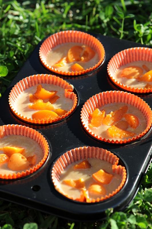 gateaux creme abricots