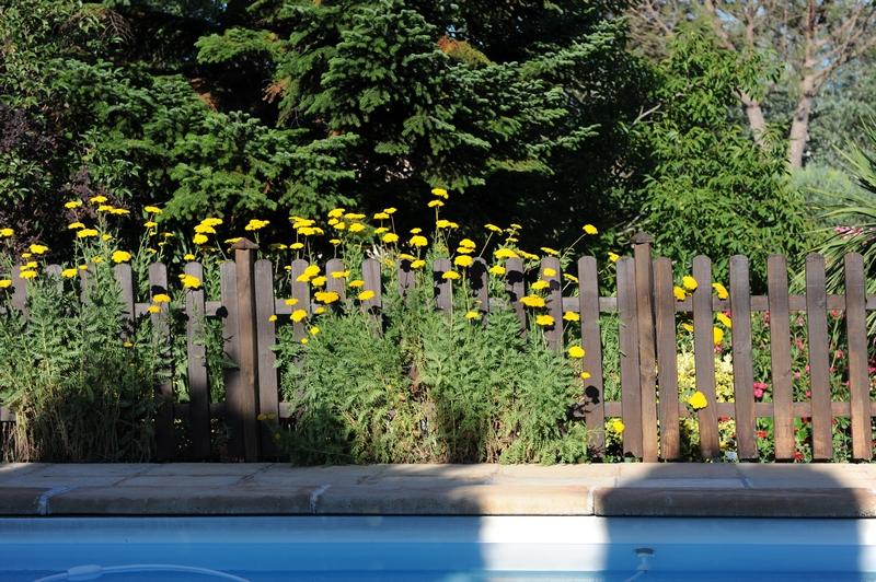 La piscine et sa barrière