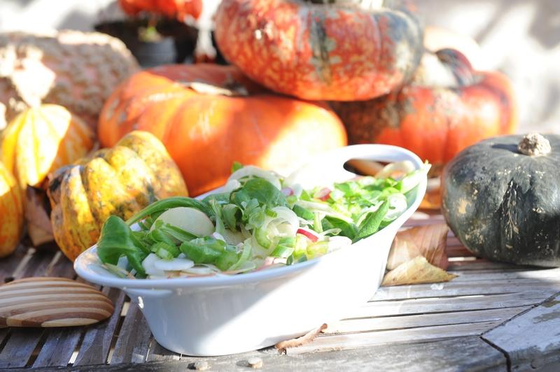 Salade d'automne ! haute en couleurs et en saveurs !