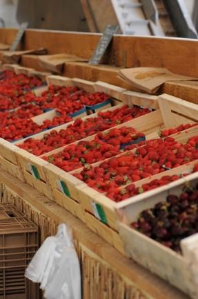 Etal de fraises au marché de la vallée rose