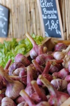 ail frais du marché de la vallée rose
