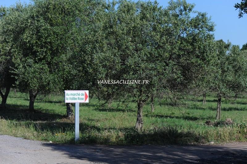 photo de la route du marché de la vallée rose à Fréjus