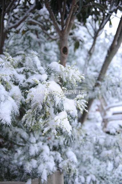 Sur le long chemin, Tout blanc de neige blanche, Un vieux Monsieur s'avance ...