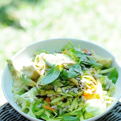 Salade toute crue toute végétale