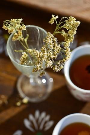 préparation de Thé vert aux épices douces et aux agrumes