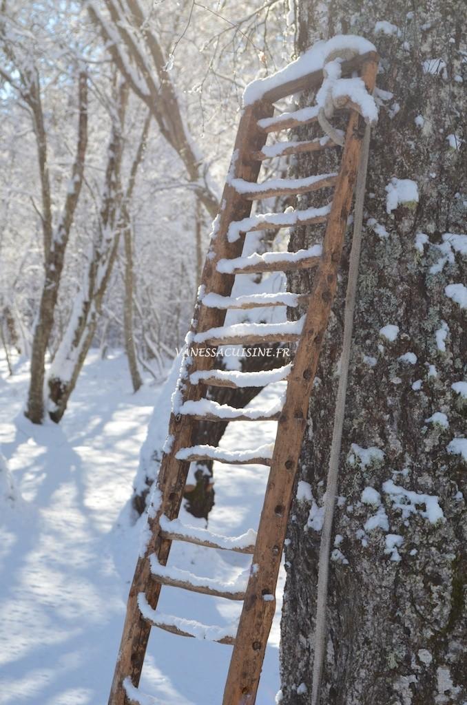 Echelle en bois enneigée