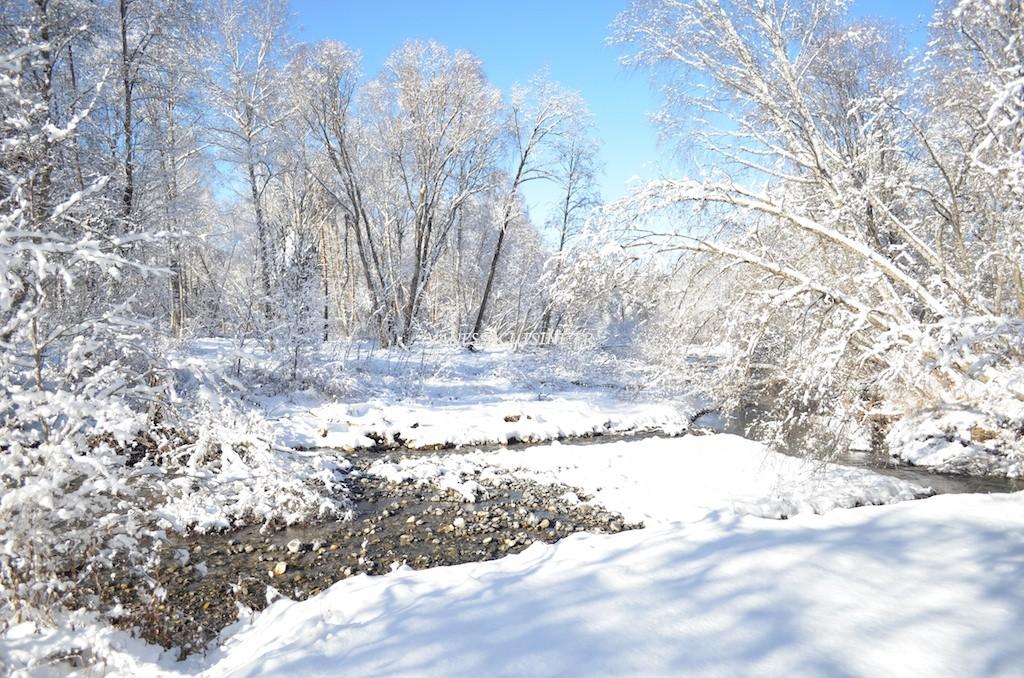 photo de la rivière la Blanche sous la neige
