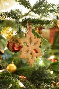 Etoile de Noël pur sarrasin (sans gluten)