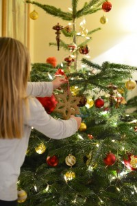 Sablé de Noël pur sarrasin (sans gluten) - Christmas cookie (gluten free) - Vanessa Romano photographe et styliste culinaire (4)