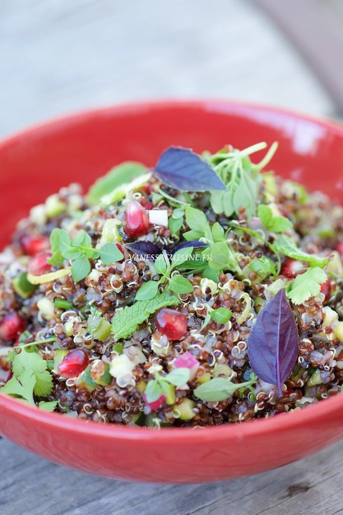 Salade de quinoa rouge et noir avec tout plein de choses dedans !
