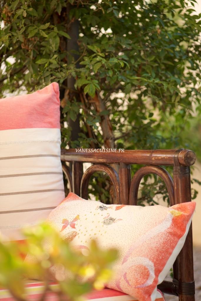 Canapé d'été - Vanessa Romano photographe et styliste culinaire _PHO9794