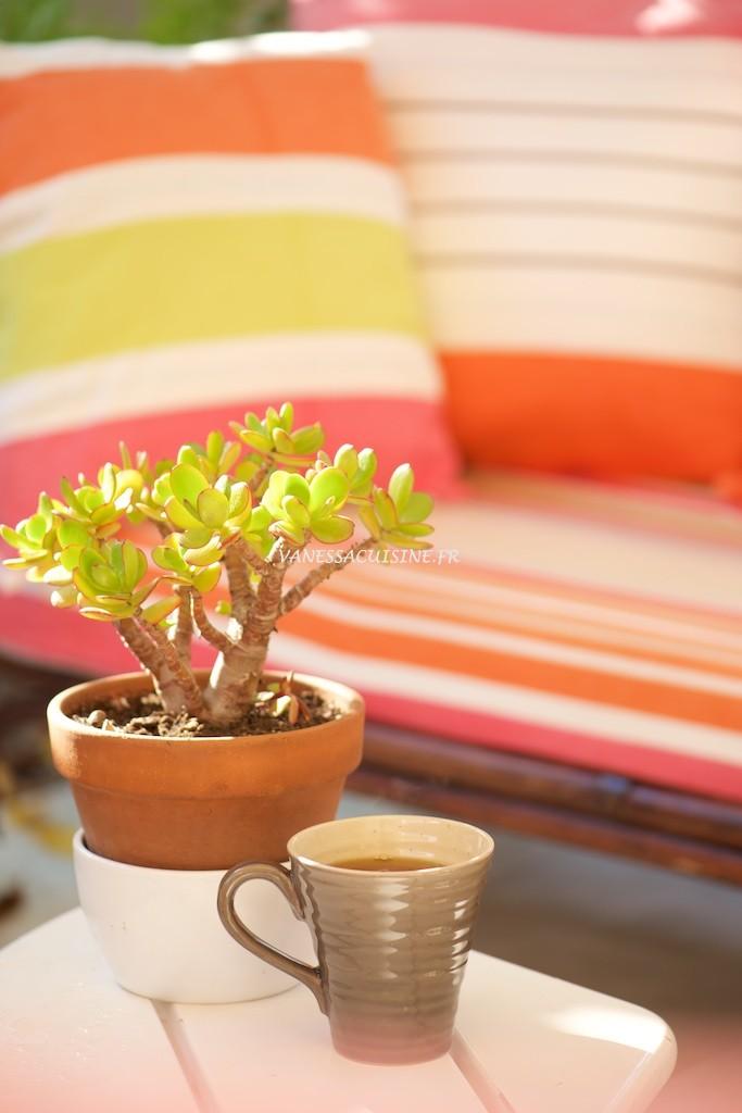 Thé sur la terrasse - Vanessa Romano photographe et styliste culinaire _PHO9789