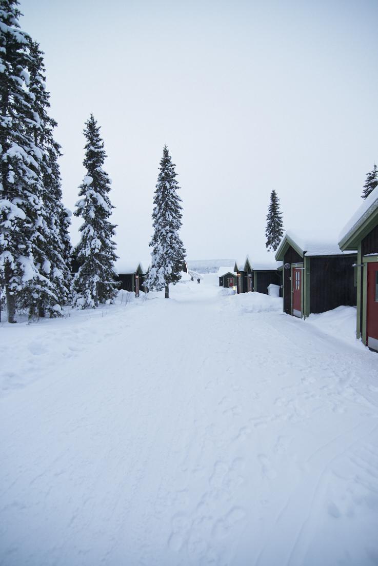 photo d'une allée du Icehotel en Suède
