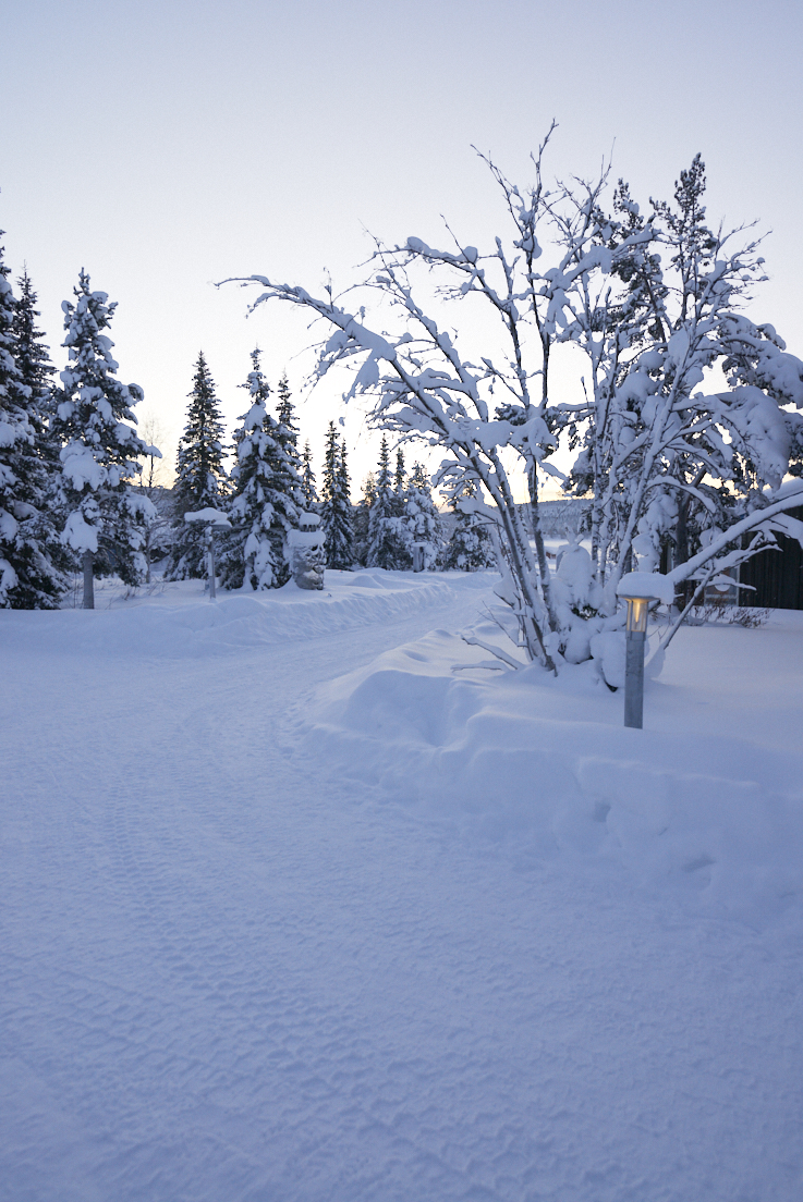 Allée du Icehotel à Jukkasjarvi Suède