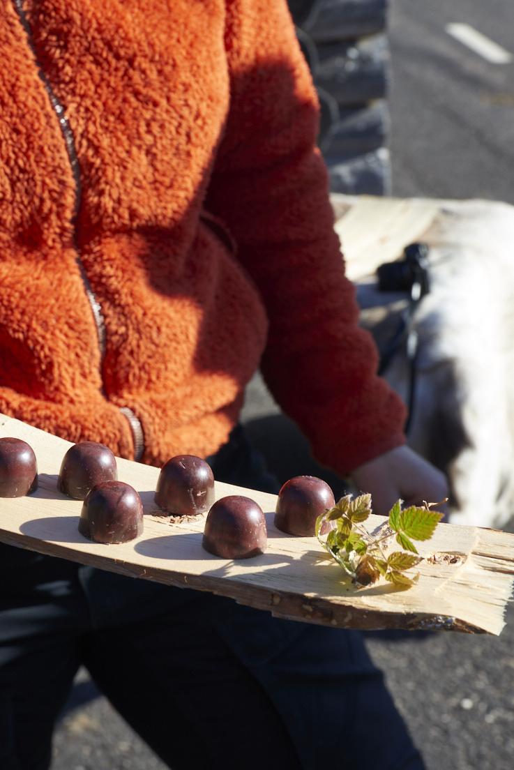 chocolats à la framboise arctique Arctic treats