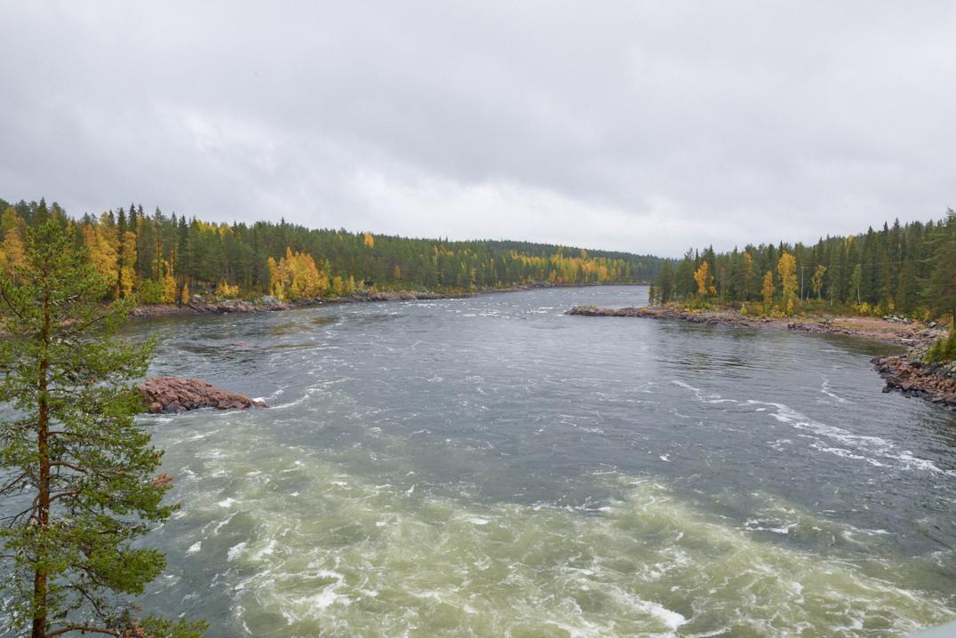 Rivière Kalix à Jockfall