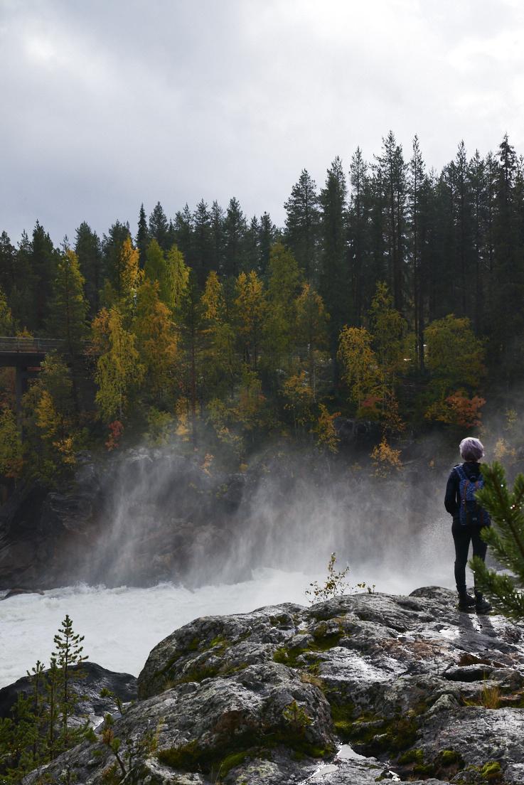 Regarder les chutes d'eau de Jockfall