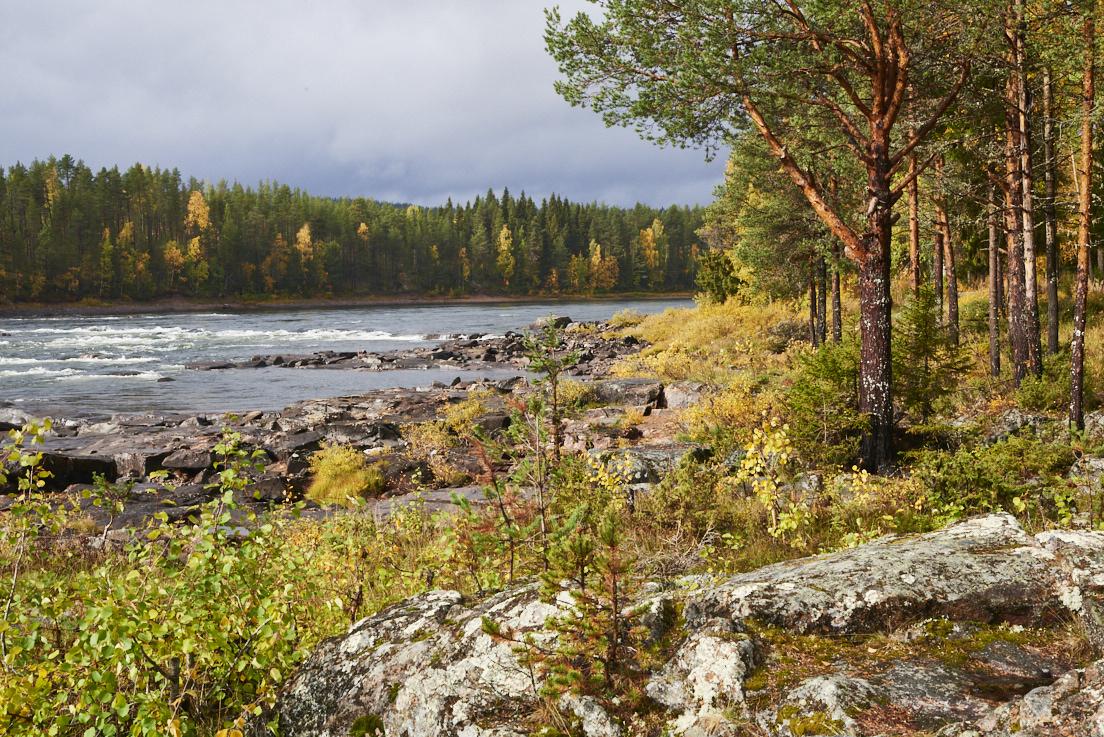 Rivière en automne à Jockfall