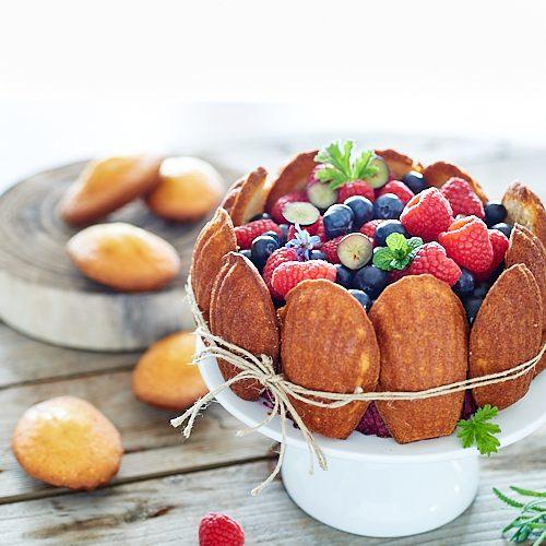 recette de Charlotte aux myrtilles et madeleines