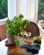 recette de l'apéritif autour de la salsa modenese