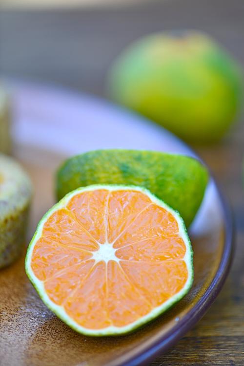 mandarine satsuma