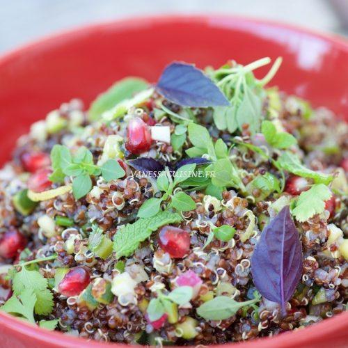 salade quinoa rouge noir legumes