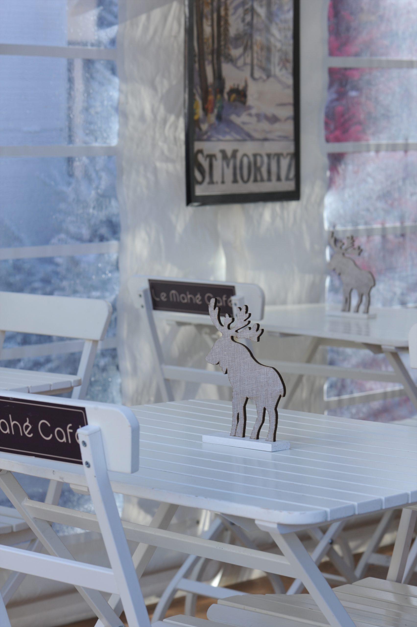 le mahé café hiver vanessa romano dsc 7603 scaled