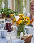 photo d'une table de déjeuner en Laponie Suédoise