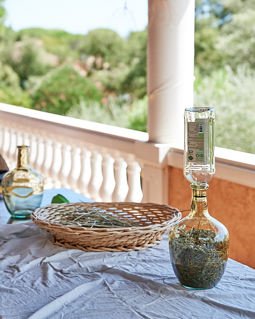 ecouler huile olive sur lavande