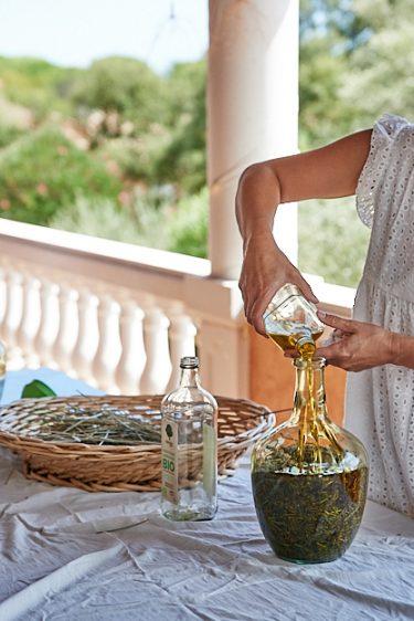 photo de préparation de macérat de lavande
