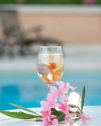 recette de gin tonic au cassis