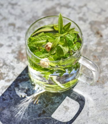 infusion verveine camomille menthe